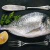 離乳食に鯛などの白身魚をいつから与えていいの?時期別おすすめレシピもご紹介!