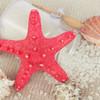 夏休みは貝殻を使ったインテリアを工作しよう!簡単にできる作り方まとめ