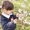 杉並区でおすすめの幼稚園15選!