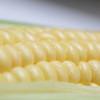離乳食にとうもろこしはいつから使える?初期・中期・後期のおすすめの人気レシピ8選