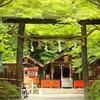 子宝神社で御祈願を!東京の子宝神社5選