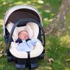 子宝運・妊娠運を風水でアップ!寝室などで意識すべき方角と場所、おすすめアイテムと注意点まとめ