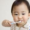 歯が生えてきた!赤ちゃんにお勧めの歯ブラシと注意点