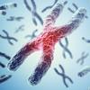 クラインフェルター症候群の症状、身体的特徴は?原因、診断方法、治療法まとめ