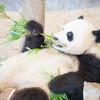 無料で楽しめる!?江戸川区自然動物園の魅力 施設紹介
