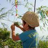 七夕飾りや夏のインテリアにおすすめ!折り紙で簡単に作れちゃうラッキースターが国内外で大人気♡
