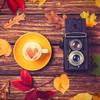 インスタキャンペーン開催中!「#ママリ秋みいつけた」で身近な秋を投稿しよう