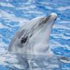 北海道の水族館は楽しくて個性的!家族で楽しめるスポット7選♡