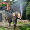 宇都宮動物園へ行こう!動物の飼育体験ができちゃうよ☆