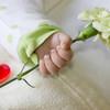 母の日の思い出のカーネーションを大事に保存するための10個のコツ