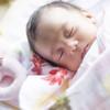 北欧発!知育や発想を育てる「オスカー&エレン」の布おもちゃが人気急上昇!