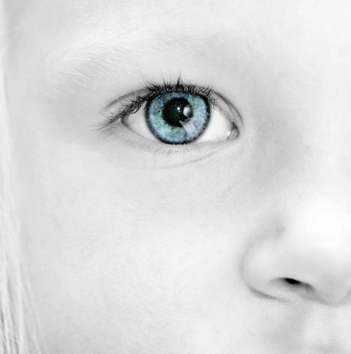赤ちゃんの目