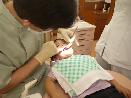 小児歯科 日本