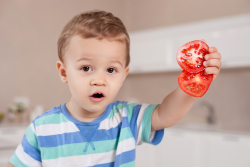 トマト 切る