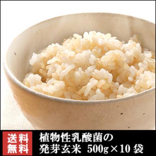 亀田製菓☆植物性乳酸菌の発芽玄米