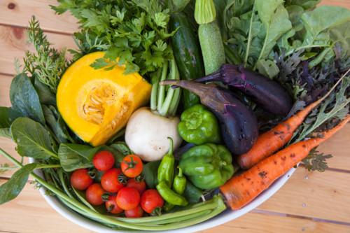 妊娠力をあげるために食べ物の効能やバランスを知ろう!