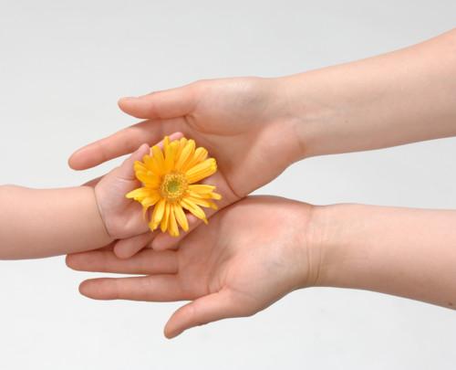 子宮内膜症の治療費